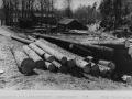 0143 Sågdammen och logen 1958
