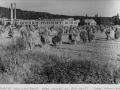 0144 Industri och lantbruk mitten av 50-talet